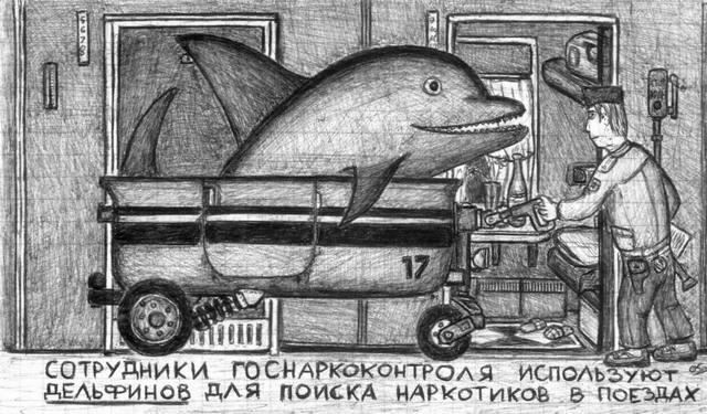 Сотрудники госнаркоконтроля используют дельфинов для поиска наркотиков в поездах.