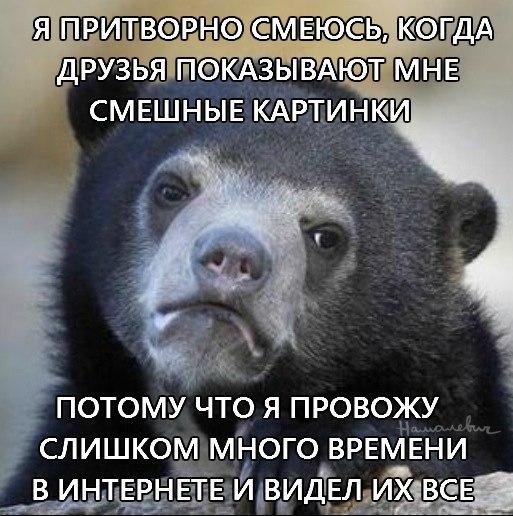 Русского медведя никому не жаль или почему запад не понимает россию