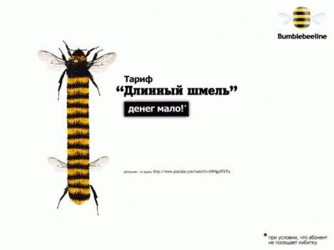 long shmel - Длинный шмель