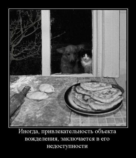 vdln - Прикольно :)