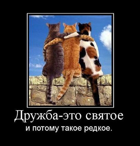 druzhba eto svyatoe - Настоящая дружба это святое и поэтому такое редкое