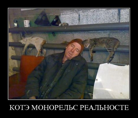 kote monorels - Кот монорельс =)