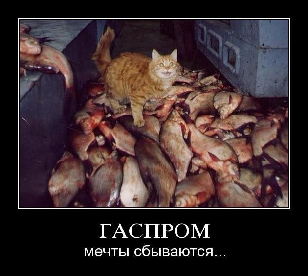 38bey1j4tr6z - Гаспром — Мечты сбываются.