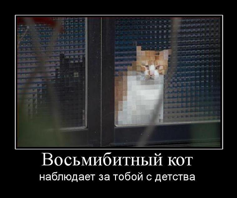 vosmibitnyij kot - Восьмибитный кот