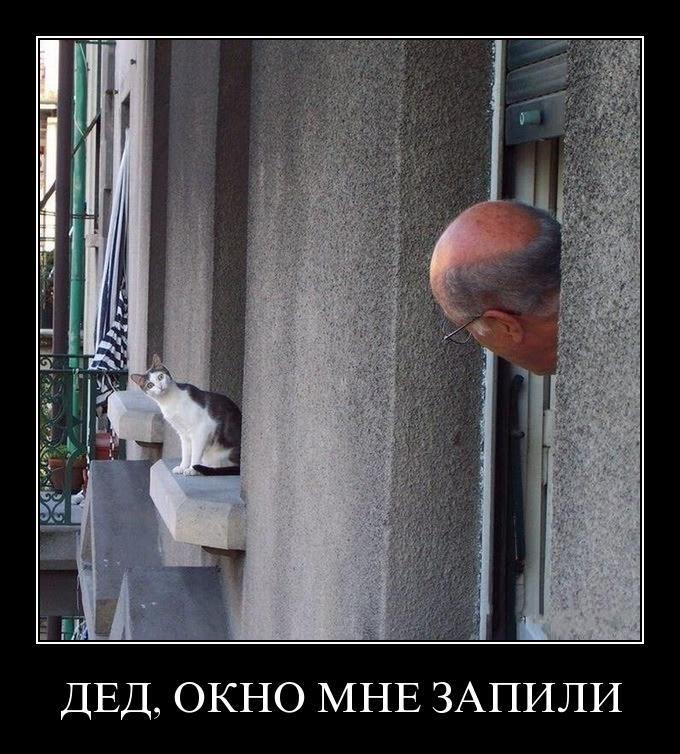 door - Мужик, окно мне запили