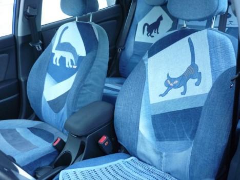 cat-car-jeans-1