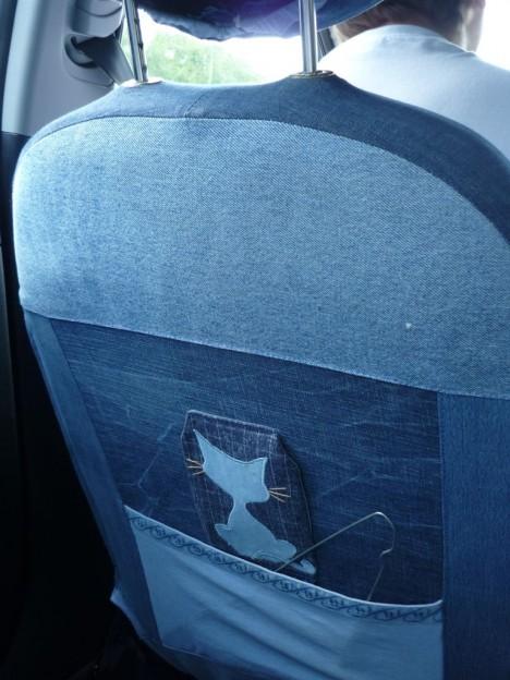 cat-car-jeans-15