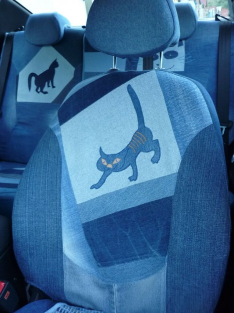 cat-car-jeans-3