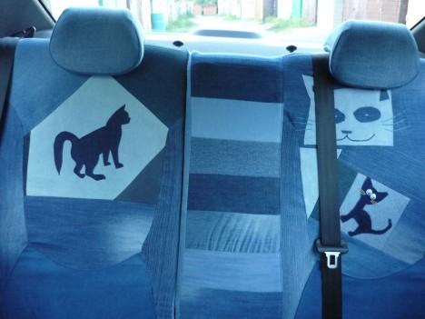 cat-car-jeans-6