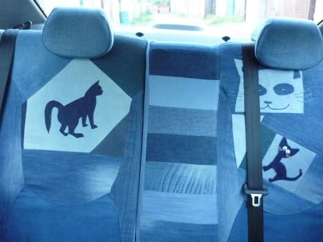 cat-car-jeans-7