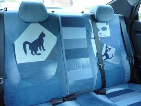 cat-car-jeans-8