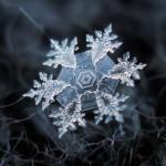 AlexeyKljatov2 150x150 - Макро снежинки от Alexey Kljatov