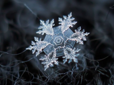AlexeyKljatov2 468x351 - Макро снежинки от Alexey Kljatov