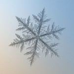 AlexeyKljatov9 150x150 - Макро снежинки от Alexey Kljatov