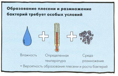Shema obrazovaniya pleseni 468x300 - Как очистить швы плитки от плесени в ванной?